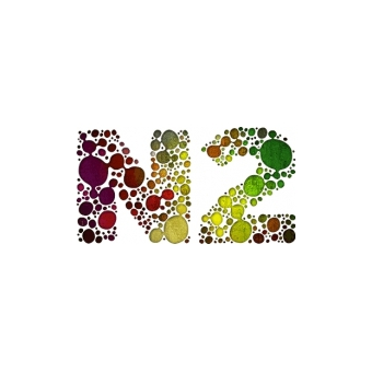 N2 Marketing Oy logo